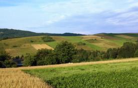 """Widok z szczytu """"Skałek"""" na Mymońskie Pola"""